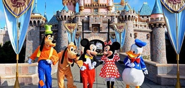 Lax to Disneyland Car service11